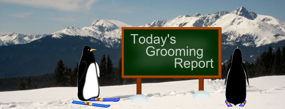 Today's Grooming Report