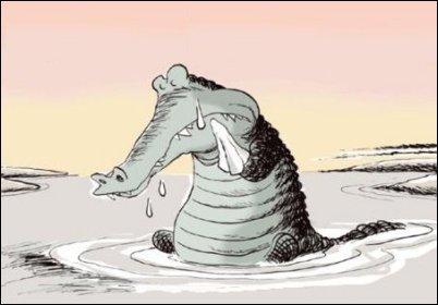Lacrime di coccodrillo
