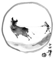 [cow-s04.jpg]