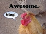 CAPTAIN CLUCK THINKS I'M AWESOME!