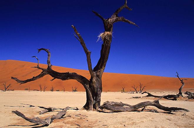 Namíbia-2005