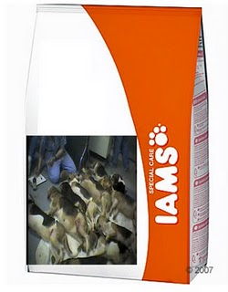 Is Iams Still Making Wet Cat Food Fillrts In Dauce