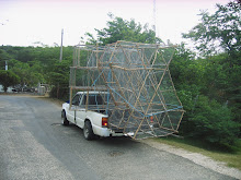 Fish traps Jamaican style...