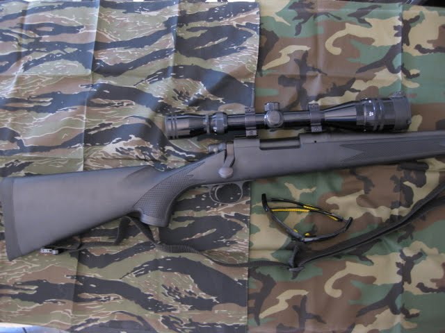 Remington 700 before