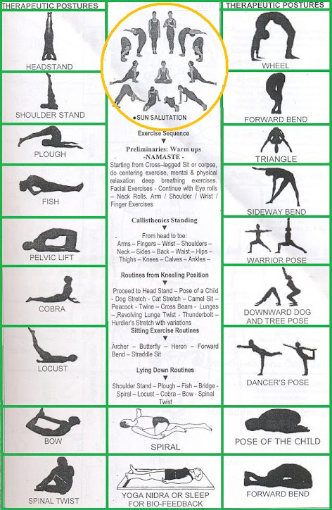 POSTER OF HATHA YOGA BASIC ASANAS
