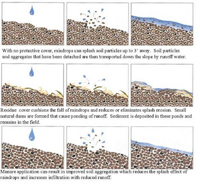 Soils of india geo jaydeep for Pictures of different types of soil with their names