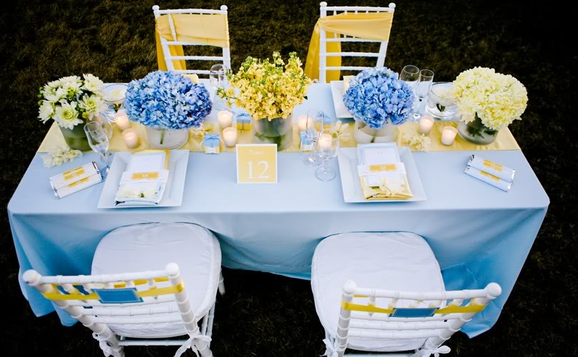 The color pallete is soft blue and yellow and uses monogram details and
