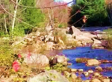 A River runs through it...Vermont