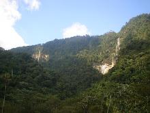 TARAPOTO, PRÓXIMA A FLORESTA AMAZÔNICA PERUANA