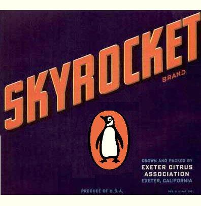 Skyrocket Penguin