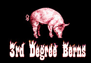3rd Degree Berns Touring Logo