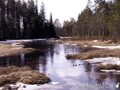 En bäck med lite is och snö i kanterna.