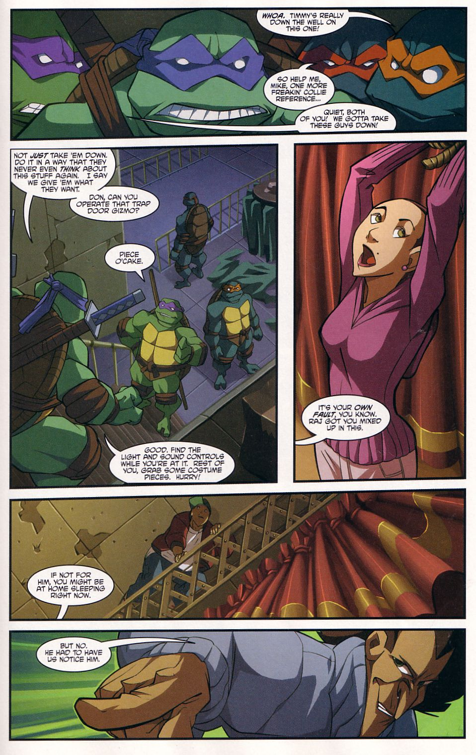 Teenage Mutant Ninja Turtles (2003) chap 7 pic 17