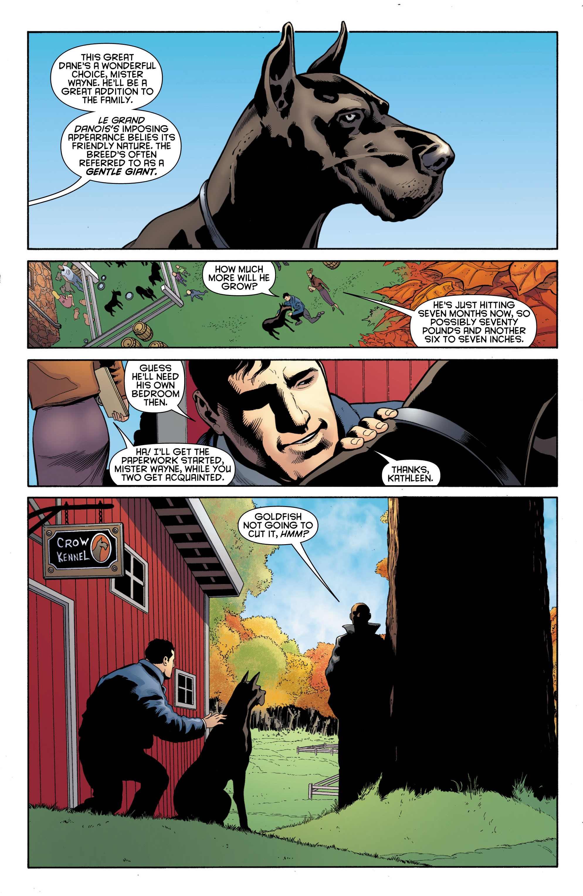 Batman and Robin (2011) chap 1 pic 43