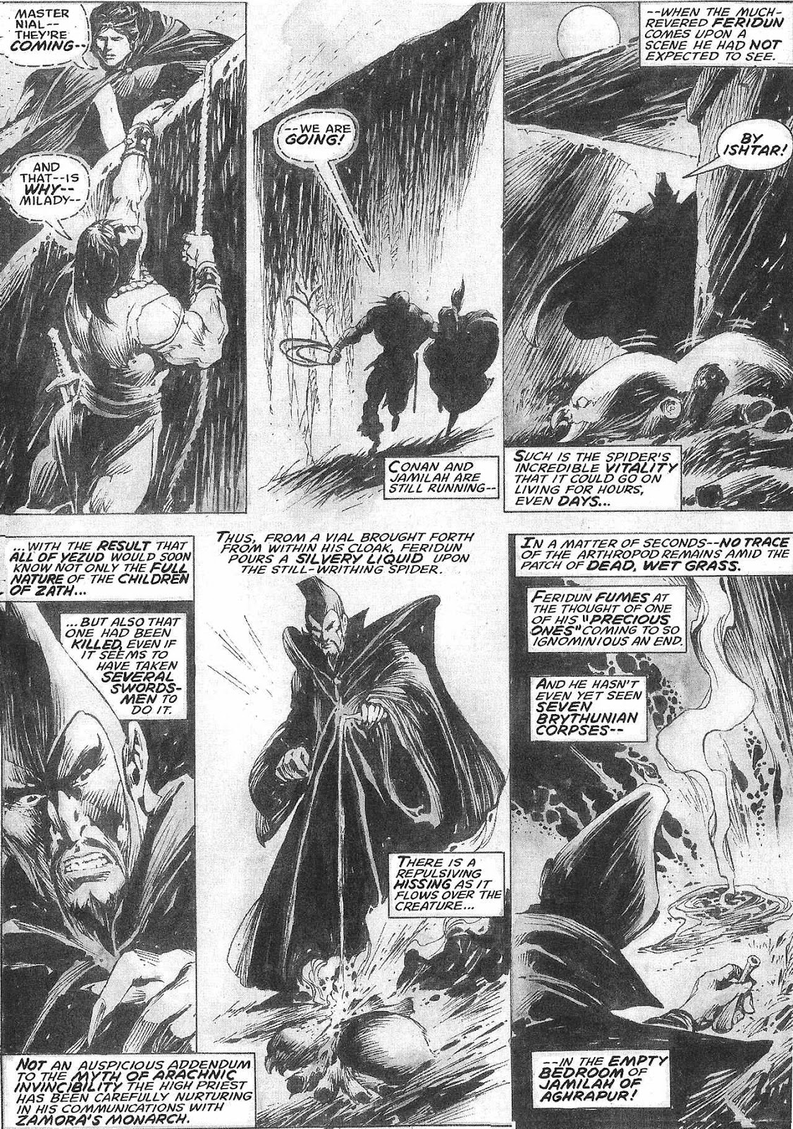 The Savage Sword Of Conan Issue #209 #210 - English 42