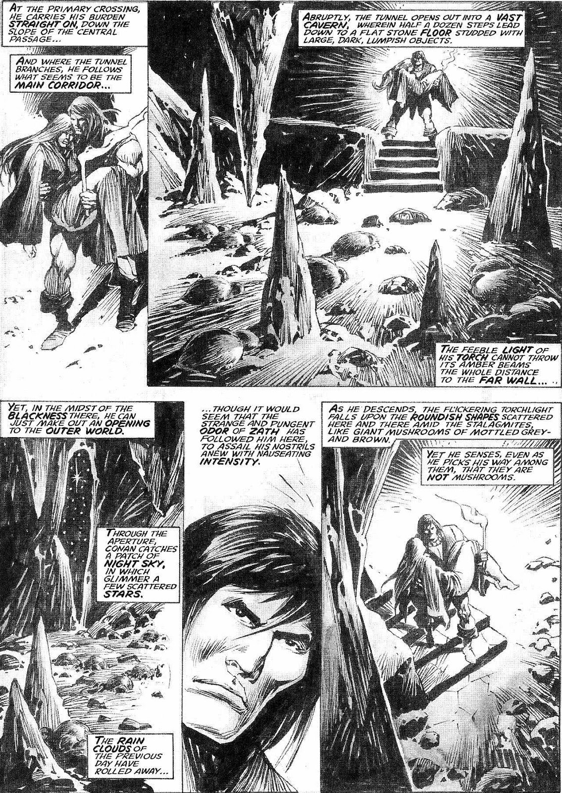The Savage Sword Of Conan Issue #210 #211 - English 28