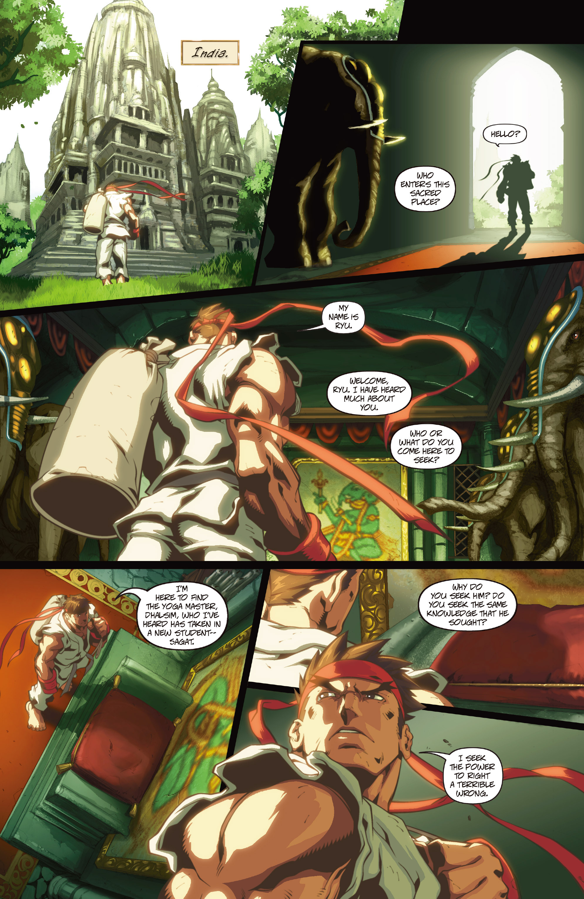 Street Fighter II chap 1 pic 13