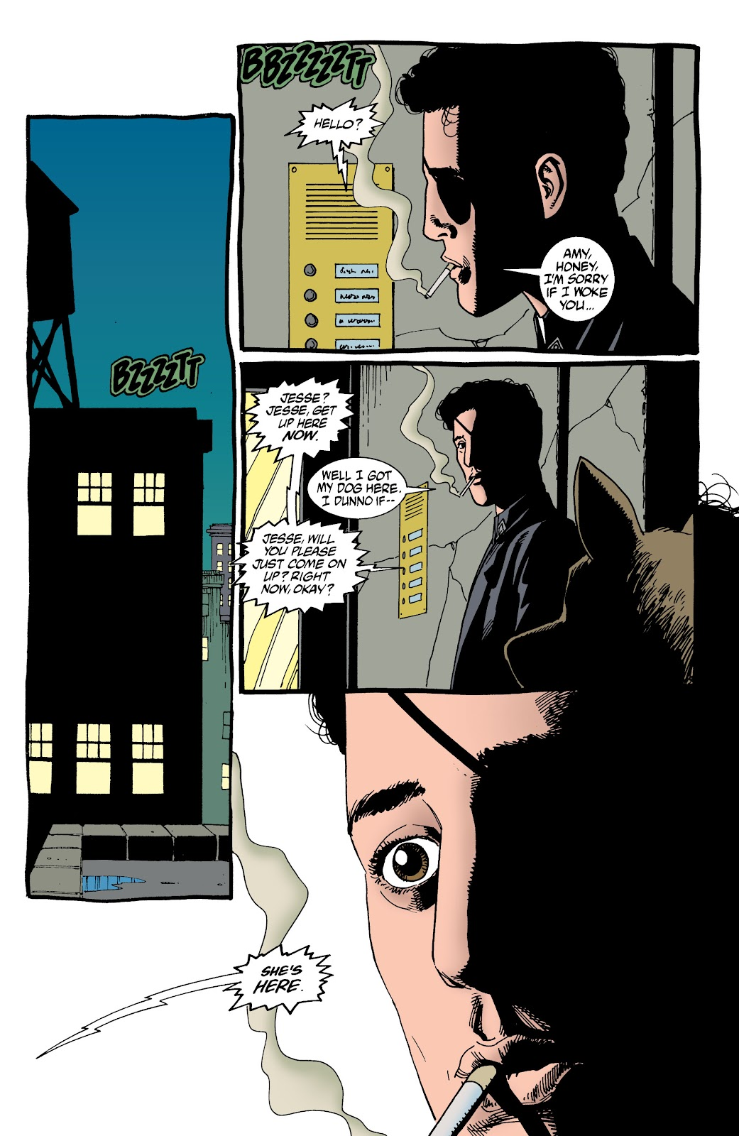 Preacher Issue #53 #62 - English 24