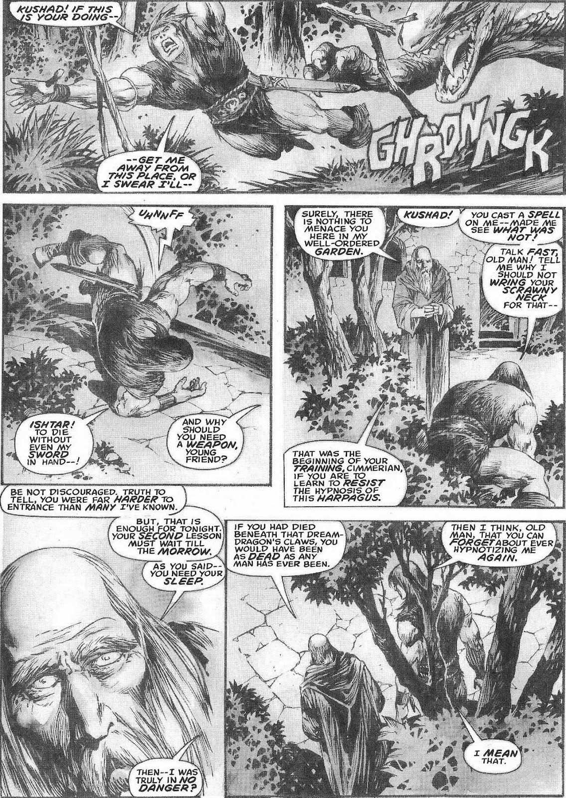 The Savage Sword Of Conan Issue #207 #208 - English 37