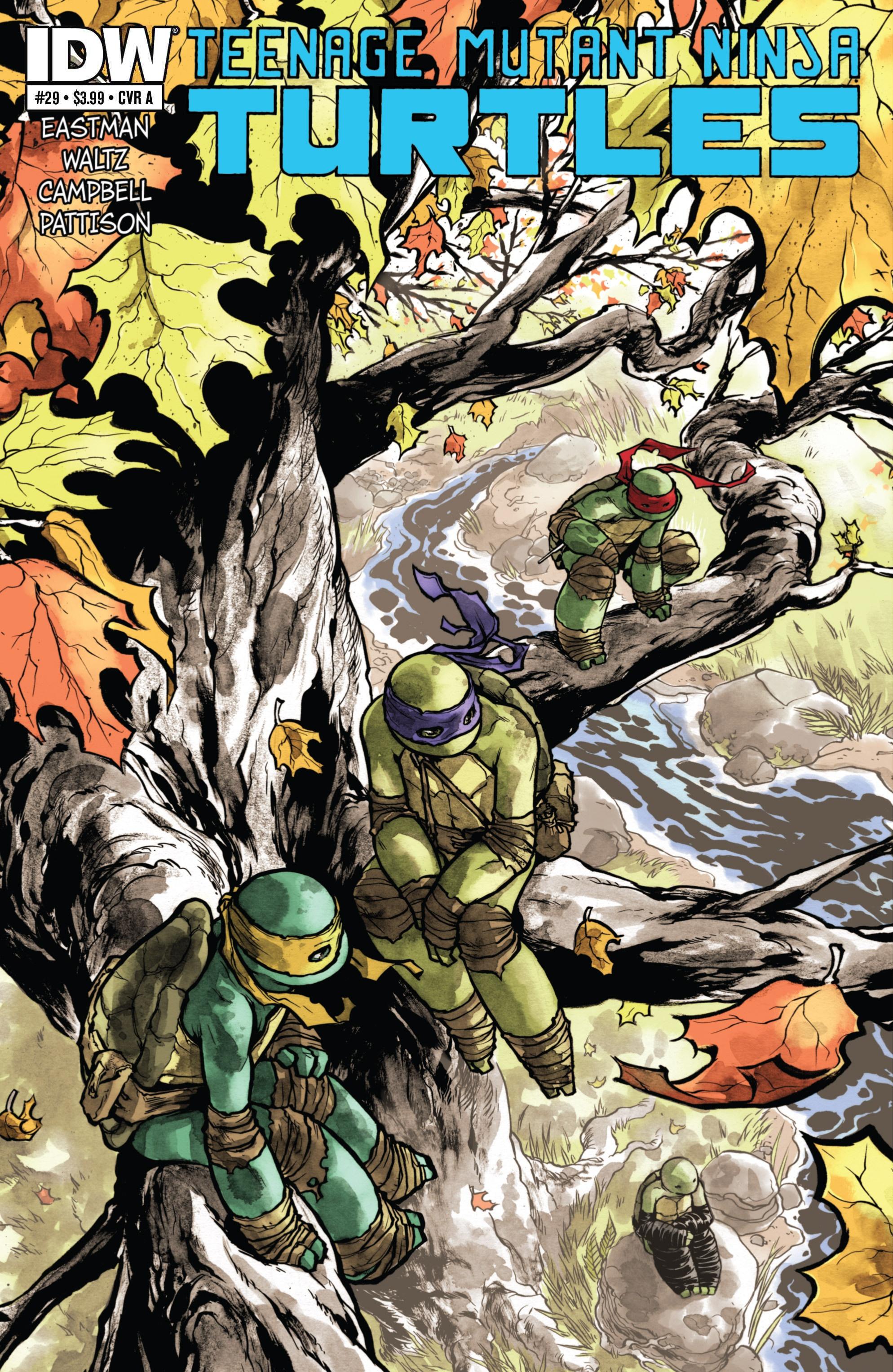 Teenage Mutant Ninja Turtles (2011) 29 Page 1