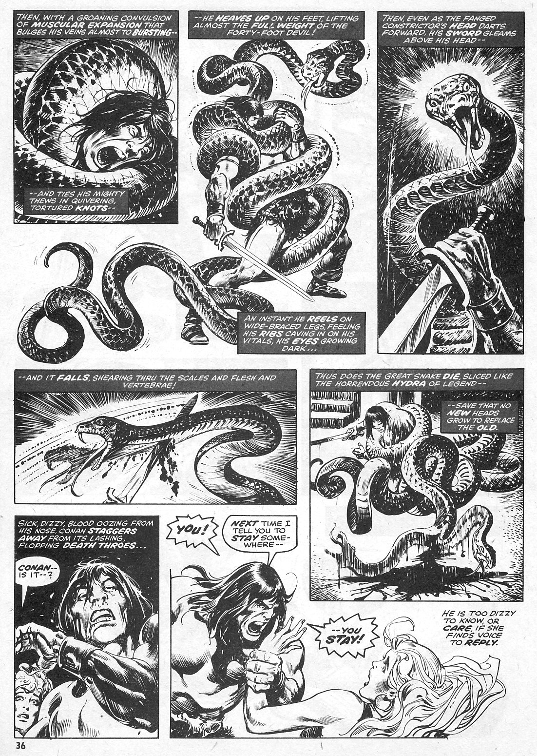 The Savage Sword Of Conan Issue #15 #16 - English 36