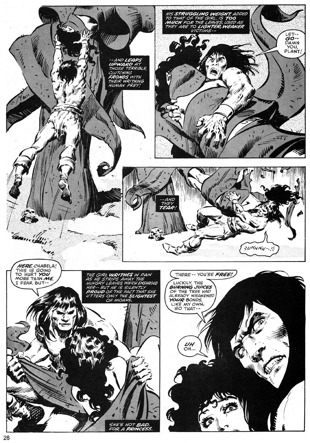 The Savage Sword Of Conan Issue #42 #43 - English 28