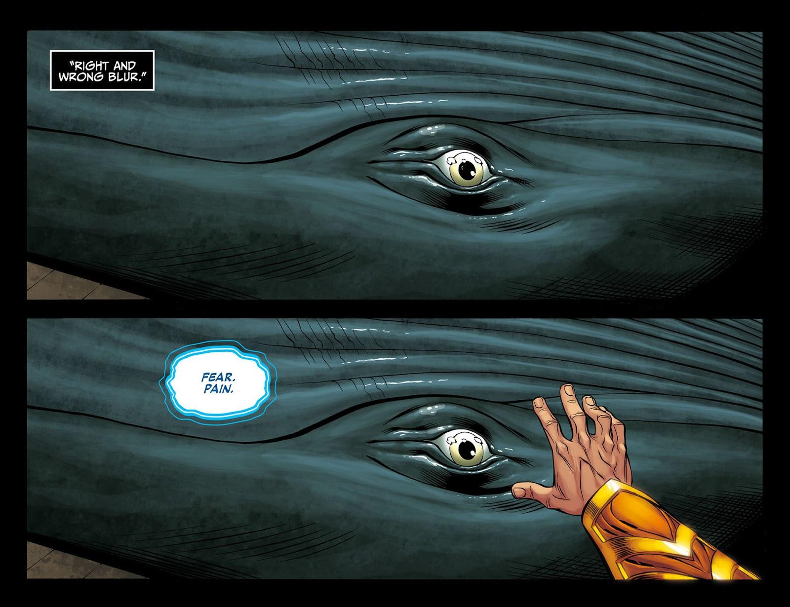 Injustice: Gods Among Us [I] Issue #10 #11 - English 12