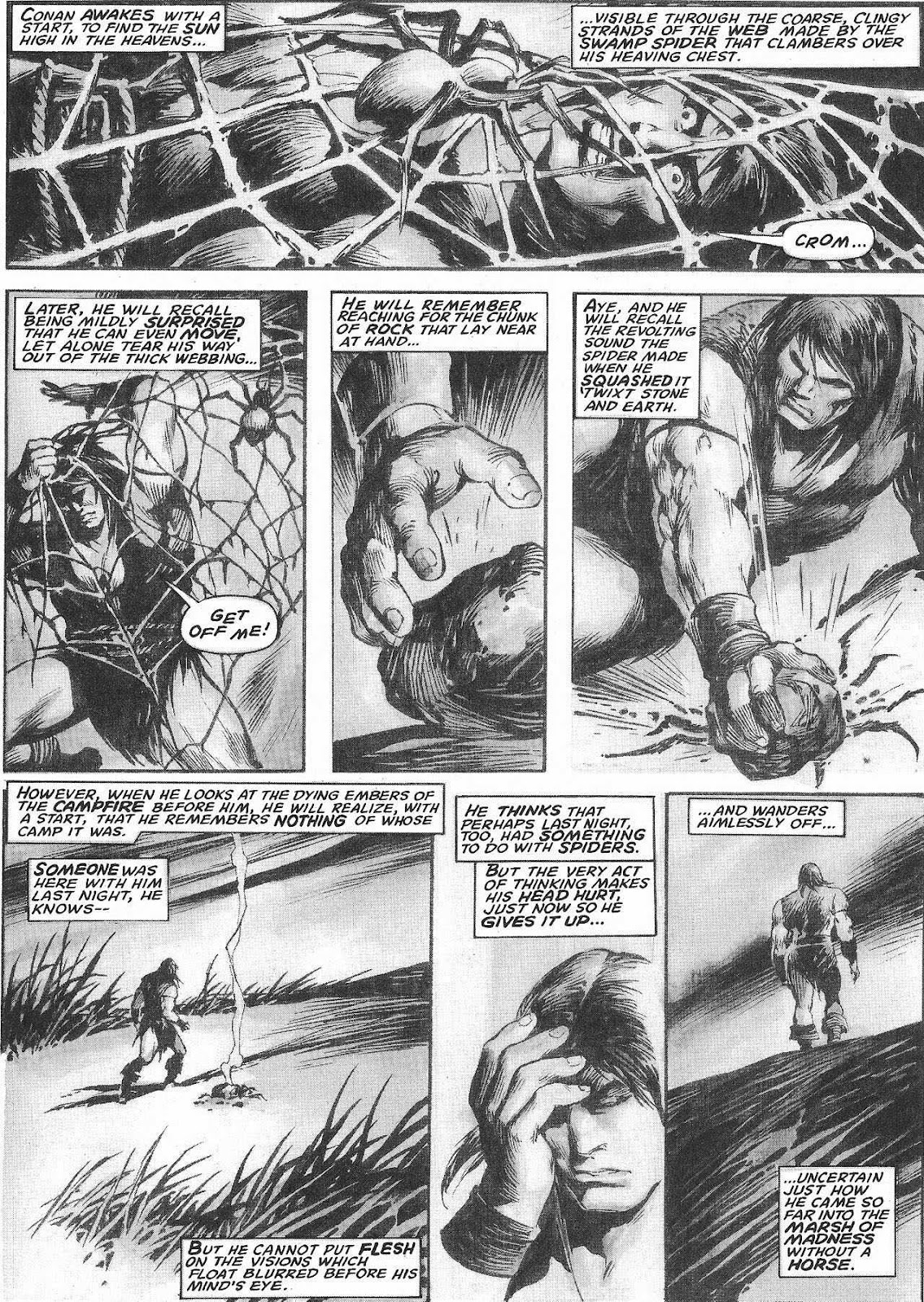 The Savage Sword Of Conan Issue #207 #208 - English 24