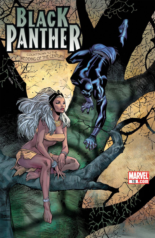 Black Panther (2005) 16 Page 1