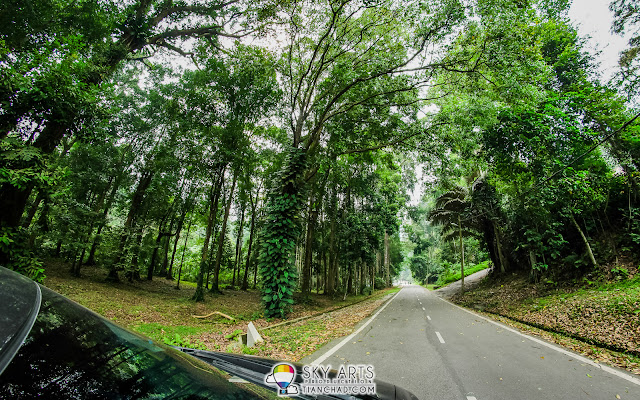 Drive around with a car inside FRIM Kepong KL