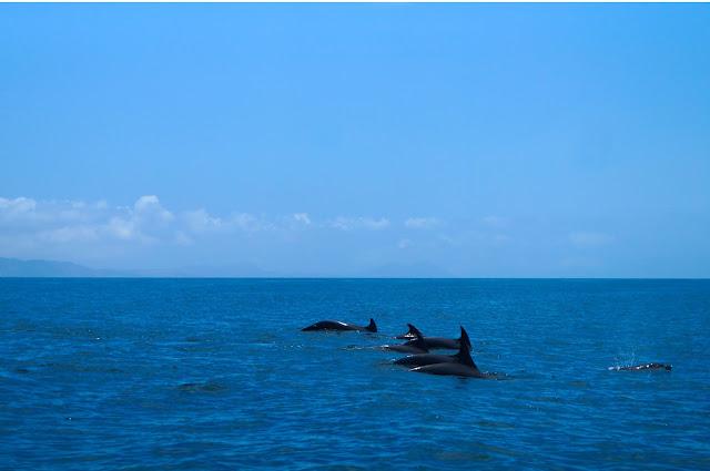 Isla Coronados B.C.S