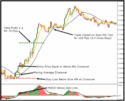 Forex Trading Strategy, Forex, Trading, Strategy, Blog, Page, Moving, Average, Crossovers, MA, MACD, Trend, Catcher, Buy, Sell, Traders