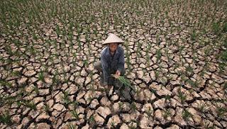 Kekeringan, Warga Aceh Utara Manfaatkan Air Sungai