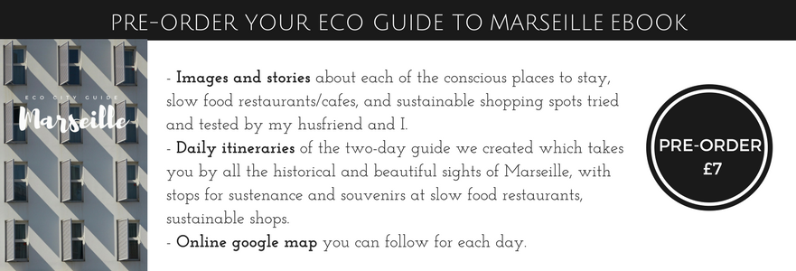 http://leotielovely.bigcartel.com/category/eco-city-guides