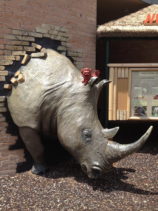 11-21-RhinoCrash.JPG