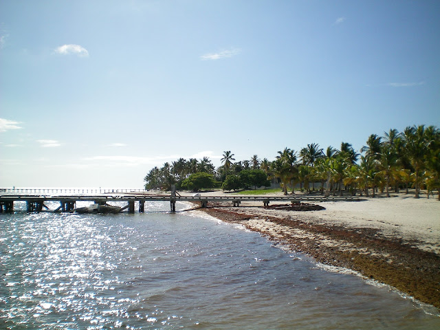 Embarcadero Playa Cabeza de Toro - Laguna Bávaro