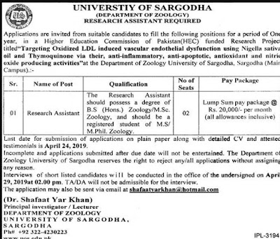 University of Sargodha Jobs 2019 | Latest New Vacancies