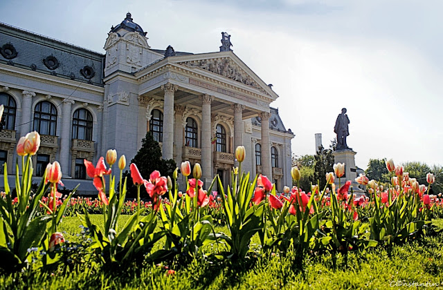 """Teatrul National """"Vasile Alecsandri"""" Iasi - blog FOTO-IDEEA"""