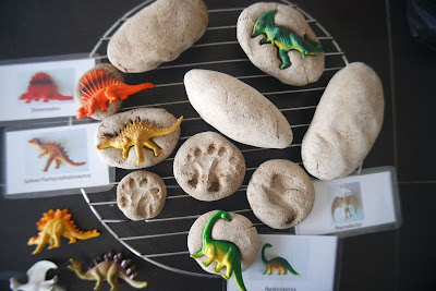 DIY dinosaur fossils with coffee dough
