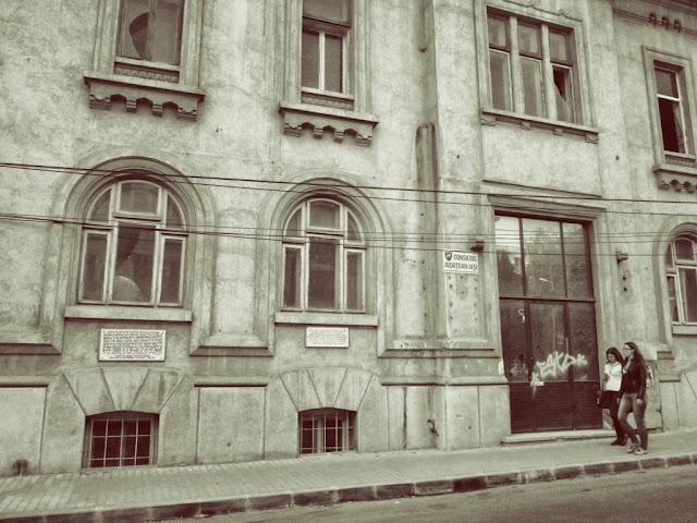 Sediul Revistei Viaţa Româneascã - str. V. Alecsandri - blog Foto-Ideea