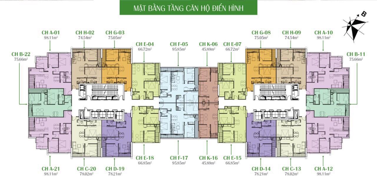 Mặt bằng tầng căn hộ điển hình tại Eco Dream