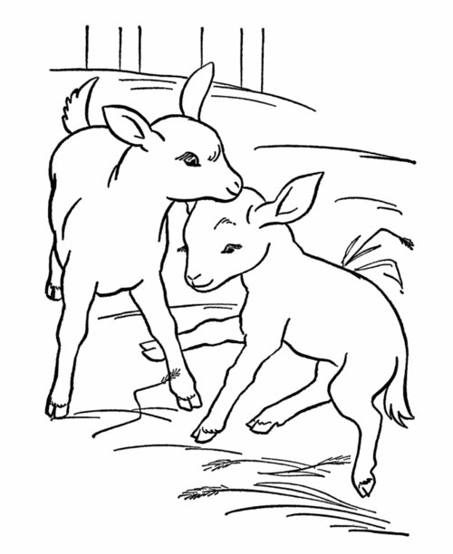 Free Coloring Pages : Baby Farm Animals Coloring Pages For Kids