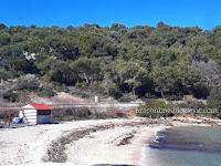 neočišćena plaža Zastup Splitska slike otok Brač Online