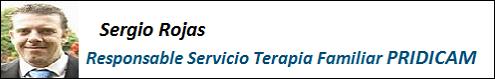 MobbingMadrid Sergio Rojas Responsable Terapia Familiar