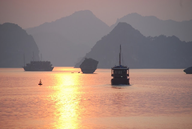 The most special Valentine's holiday in Vietnam