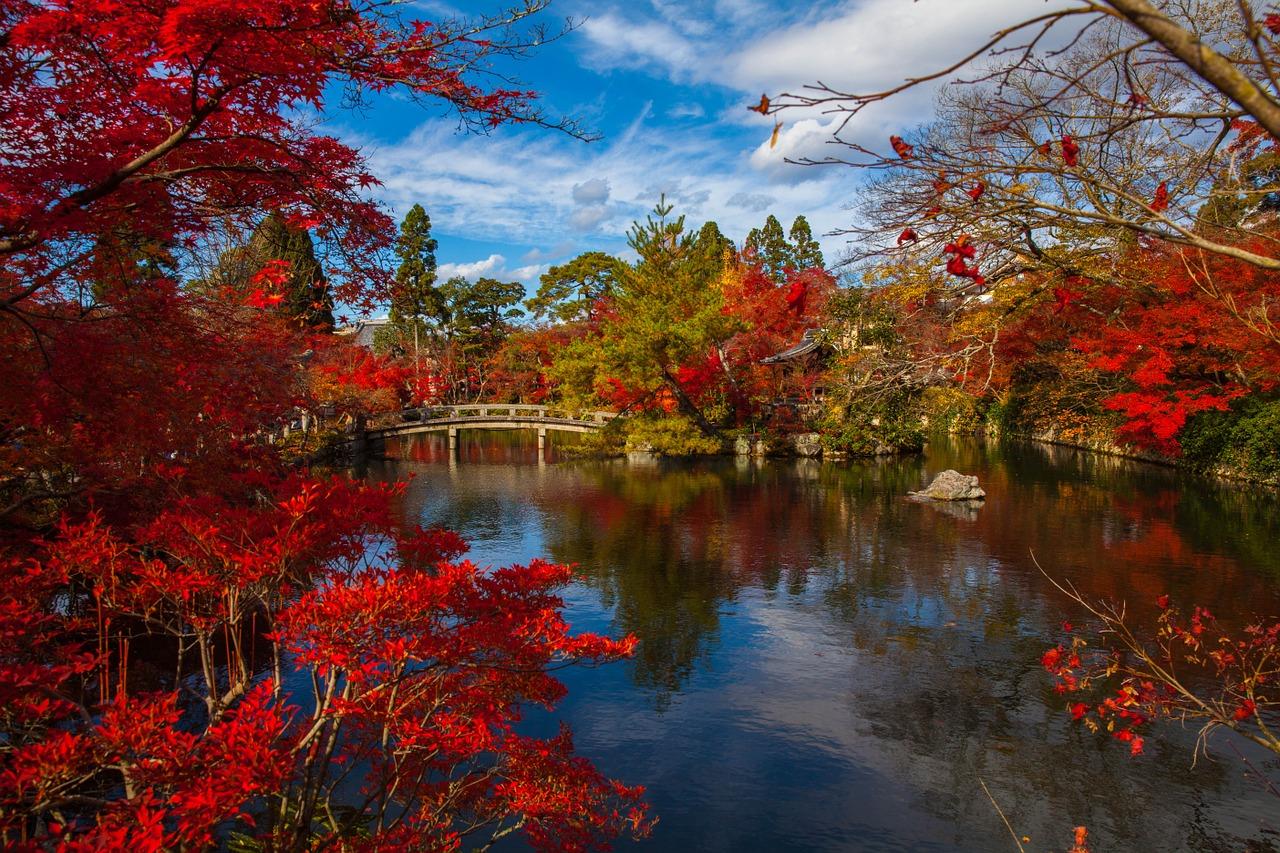 9 lời khuyên để sống với gia đình chủ nhà Nhật Bản