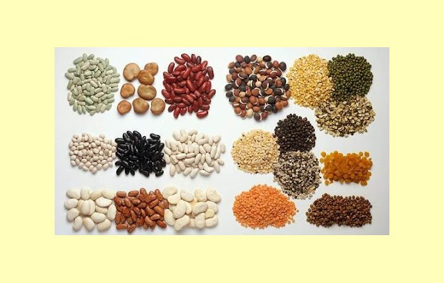Pengertian Protein, Struktur Protein, Fungsi Protein, Jenis Protein
