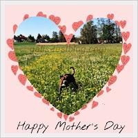 Muttertagsgrüße