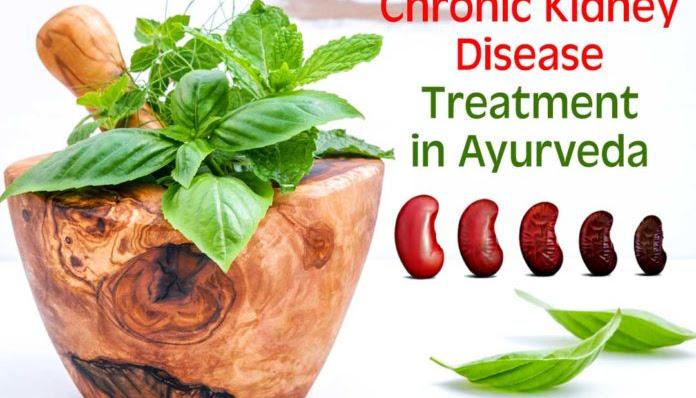 Chronic Kidney Disease Treatment