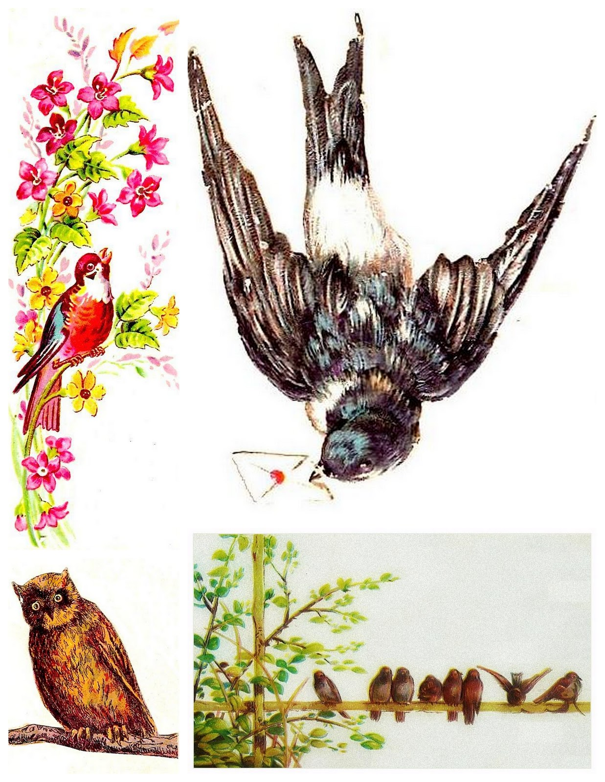 free clipart of vintage birds - photo #45
